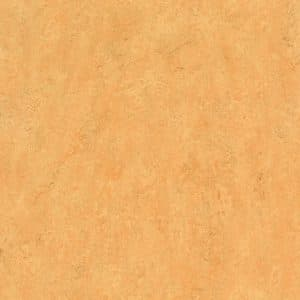 Marmoleum_Decibel-307535_shell