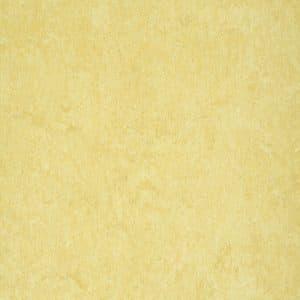 marmorette-acoustic-lpx-121-098