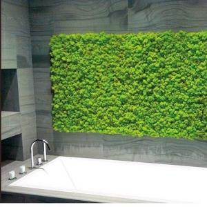мох ванная